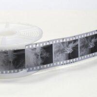 Révélateurs films